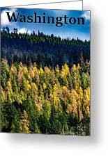 Washington - Gifford Pinchot National Forest Greeting Card