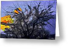 Wasteway Willow 10 Greeting Card