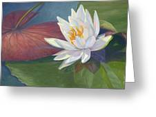 Water Beauty Greeting Card