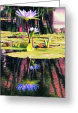 Water Lily 12 Greeting Card