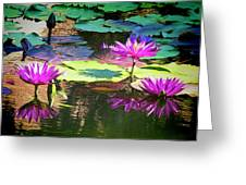 Water Lily 6 Greeting Card