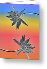 Water Lily Duo Greeting Card