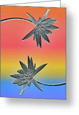 Water Lily Duo Two Greeting Card