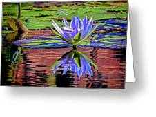 Water Lily10 Greeting Card