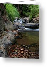 Water Stream On The River With Small Waterfalls Greeting Card