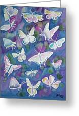 Watercolor - Butterfly Design Greeting Card