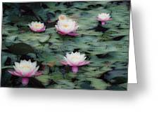 Waterlily Impressions Greeting Card