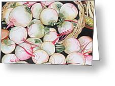 Watermelon Radishes And A Teeny Ear Of Corn Greeting Card