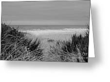 Westport Red Filter Greeting Card by Jeni Gray