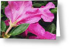 Wet Blooms Greeting Card