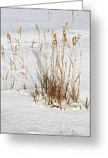 Whitehorse Winter Landscape Greeting Card
