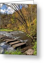 Whitewater River Scene 55 C Greeting Card