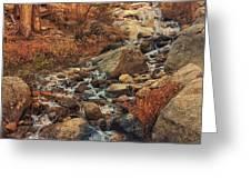 Whitney Portal Cascades Greeting Card by John Hight