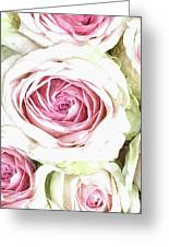 Wild Pink Roses Greeting Card