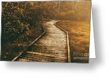 Wild Routes Greeting Card