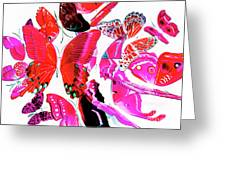 Wild Vibrancy Greeting Card
