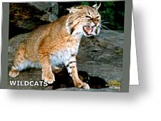 Wildcats Mascot 3 Greeting Card