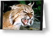 Wildcats Mascot 4 Greeting Card
