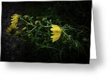Windy Weeds Greeting Card