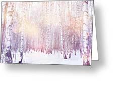 Winter Magic Birch Grove Greeting Card