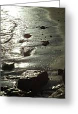 Winter Sun On The Tide Greeting Card