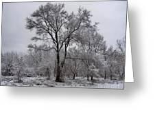 Winter Survivor Greeting Card
