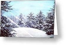 Winters Solstice Greeting Card by Joel Tesch