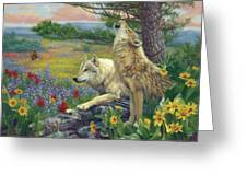 Wolves In The Spring Greeting Card