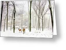 Forest Winter Visitors Greeting Card