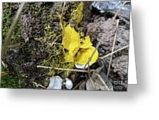 Yellow Enveloping White Greeting Card