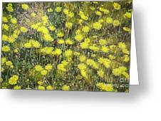 Yellow Meadow Greeting Card