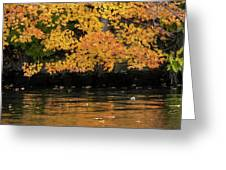 Yellow On Water Greeting Card by Dan Friend