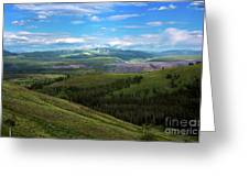 Yellow Stone National Park Where Bears Live  Greeting Card