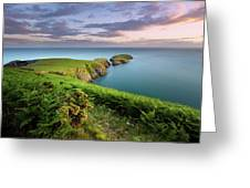 Ynys Lochtyn Summer Sunrise Greeting Card by Elliott Coleman