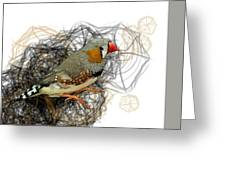 Z Is For Zebra Finch Greeting Card