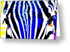 Zany Zebra II Greeting Card