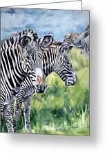 Zebras Greeting Card