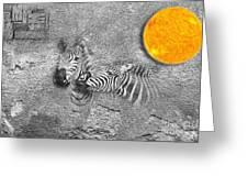 Zebras No 02 Greeting Card