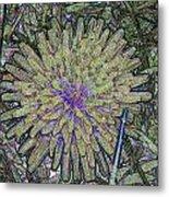 A Dandelion By A Different Color Metal Print