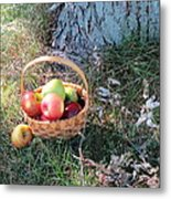 Apples Everywhere Metal Print