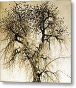 Bird Tree Fine Art  Mono Tone And Textured Metal Print