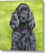 Budwood The Black Cocker Spaniel Metal Print