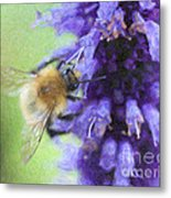 Bumblebee On Buddleja Metal Print