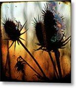 C Est La Vie Sunset Metal Print