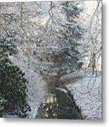 Creek Reflection Metal Print