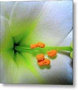 Easter A New Beginning  Metal Print