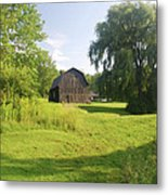 Evergreen Trails 7523 Metal Print