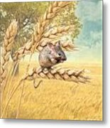 Field Mouse Metal Print