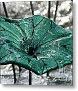 Glass Lily Pad  Metal Print
