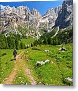 Hiking In Contrin Valley Metal Print